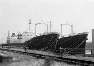 Two more BP bird class tankers laid up at Barry Docks, 1976.